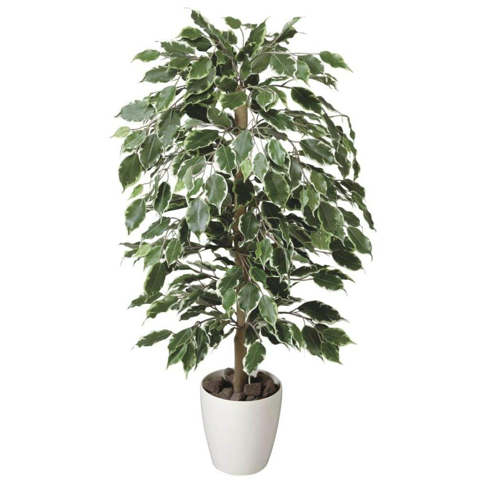 光触媒 光の楽園 ゴールデンフィカス1.0 202A150約 幅55×奥行55×高さ100cm人工植物 造花 フェイクグリーン おしゃれ インテリア 大型