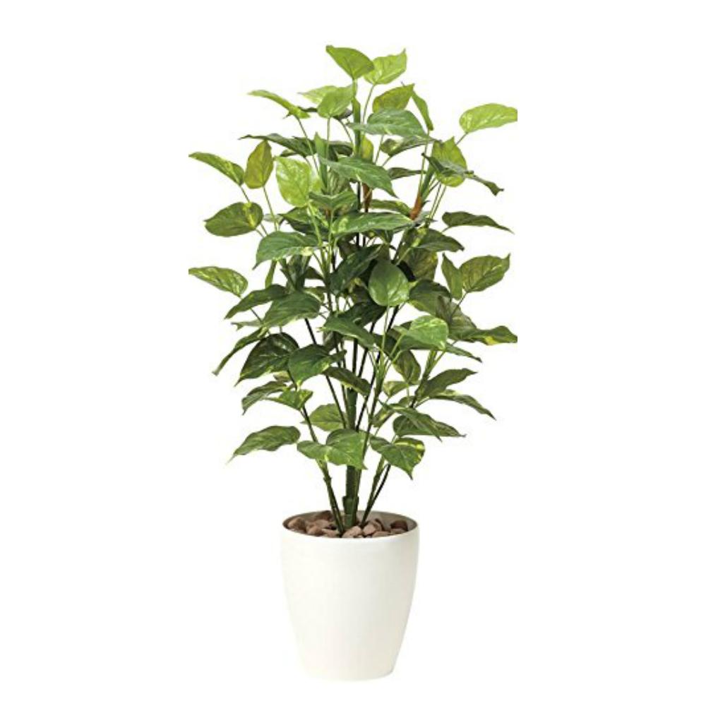 光触媒 人工観葉植物 造花(フェイクグリーン・フェイクフラワー)光の楽園 ポトス 1.0m 513A150お部屋の消臭・抗菌・防汚効果があります。水やり・お手入れ不要置くだけで素敵な癒し空間約 幅50×奥行50×高さ100cm