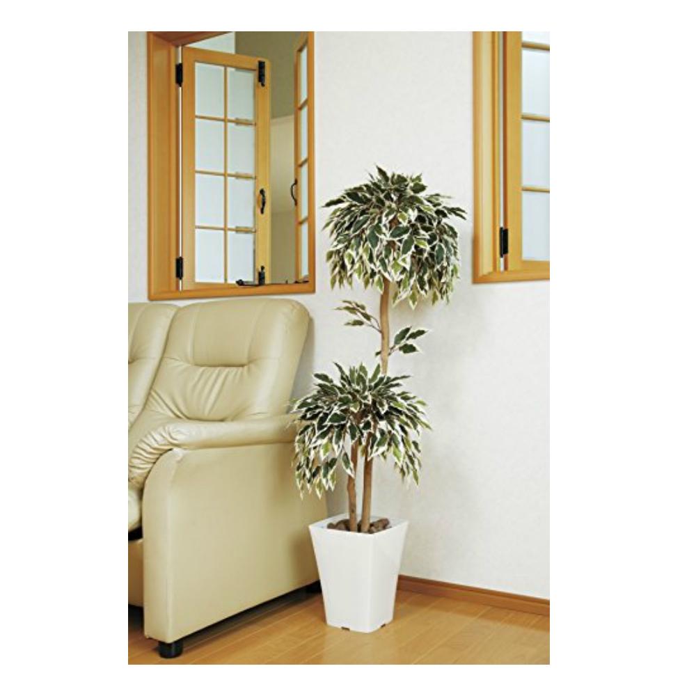 光触媒 人工観葉植物 造花(フェイクグリーン)光の楽園 斑入りベンジャミン ダブル1.2m 192A170お部屋の消臭・抗菌・防汚効果があります。水やり・お手入れ不要置くだけで素敵な癒し空間を演出約 幅50×奥行40×高さ120cm