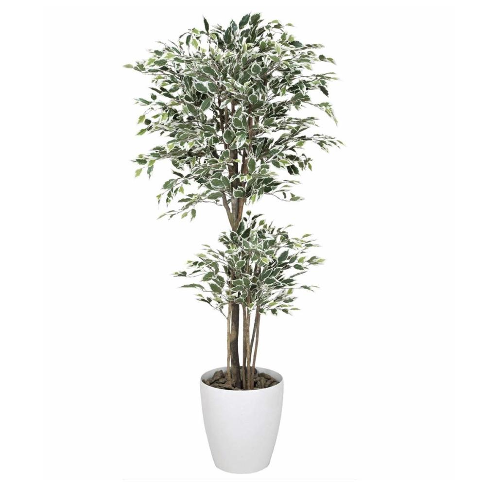 光触媒 光の楽園 トロピカルベンジャミン斑入り1.8 167F570約 幅80×奥行80×高さ180cm人工植物 造花 フェイクグリーン おしゃれ インテリア 大型