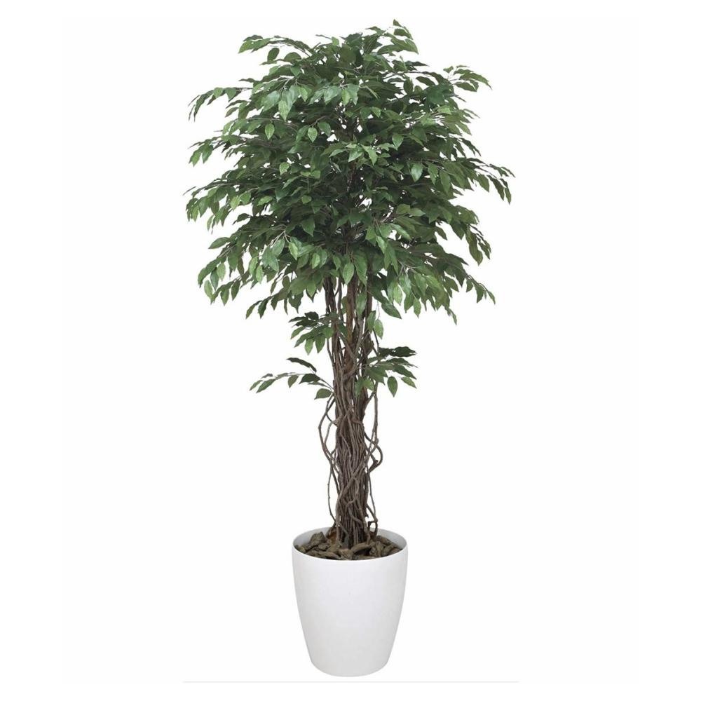 光触媒 人工観葉植物 造花(フェイクグリーン)光の楽園 ベンジャミンリアナ 1.8m 152F600お部屋の消臭・抗菌・防汚効果があります。水やり・お手入れ不要置くだけで素敵な癒し空間約 幅80×奥行80×高さ180cm