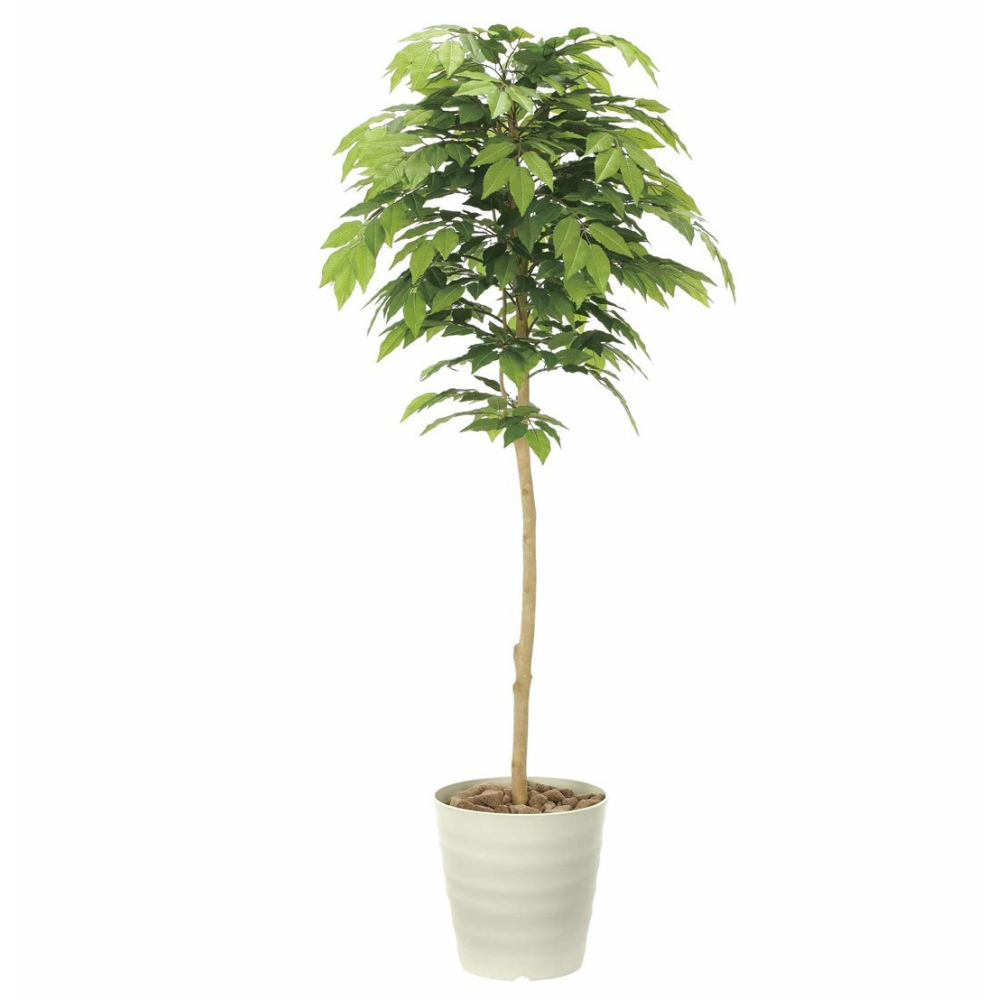 光触媒 人工観葉植物 造花 フェイクグリーン 光の楽園 ケヤキ 1.6m おしゃれ インテリア 大型 904A330
