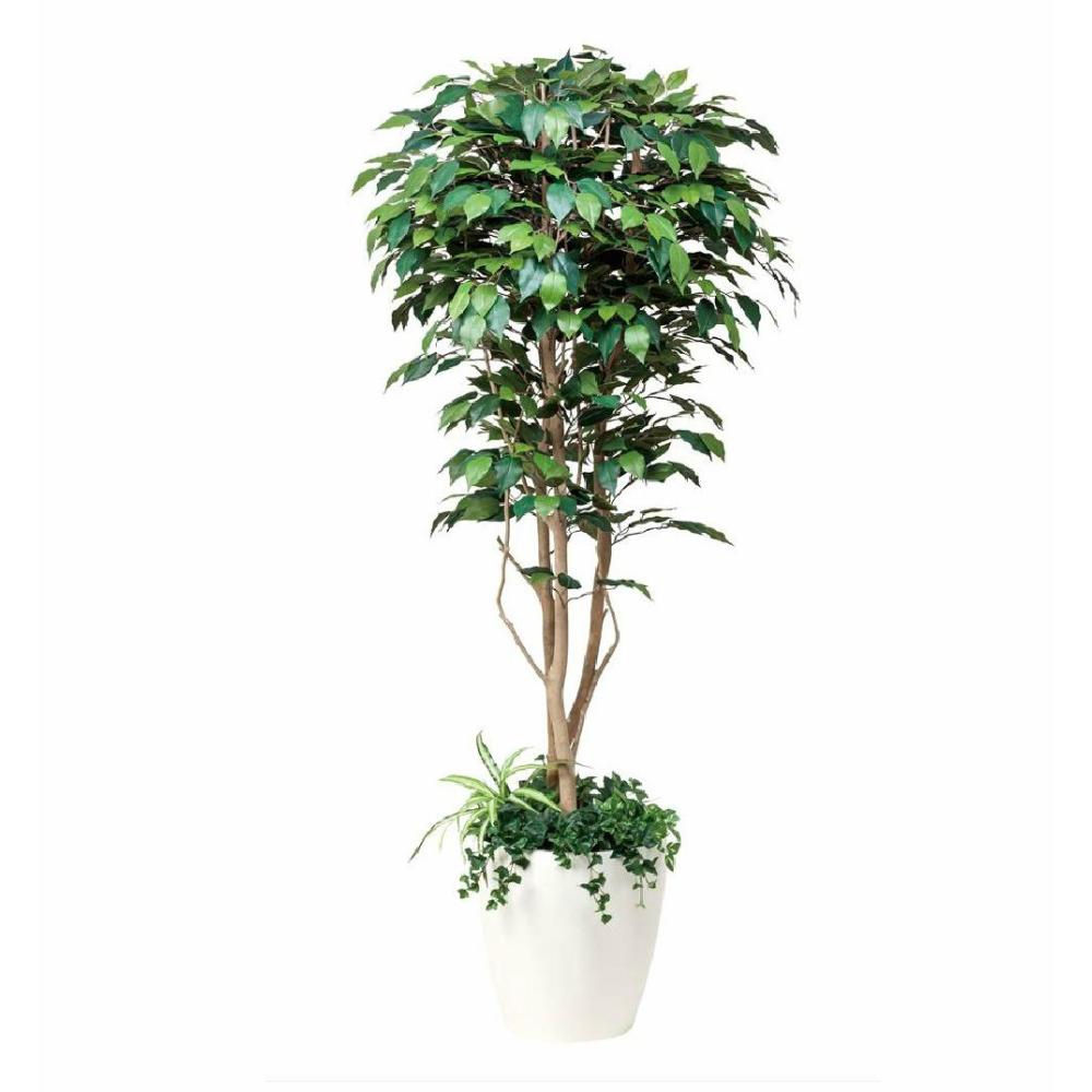 光触媒 人工観葉植物 造花(フェイクグリーン)光の楽園 フィカスベンジャミン植栽付 1.8m 508F500お部屋の消臭・抗菌・防汚効果があります。水やり・お手入れ不要置くだけで素敵な癒し空間約 幅80×奥行80×高さ180cm