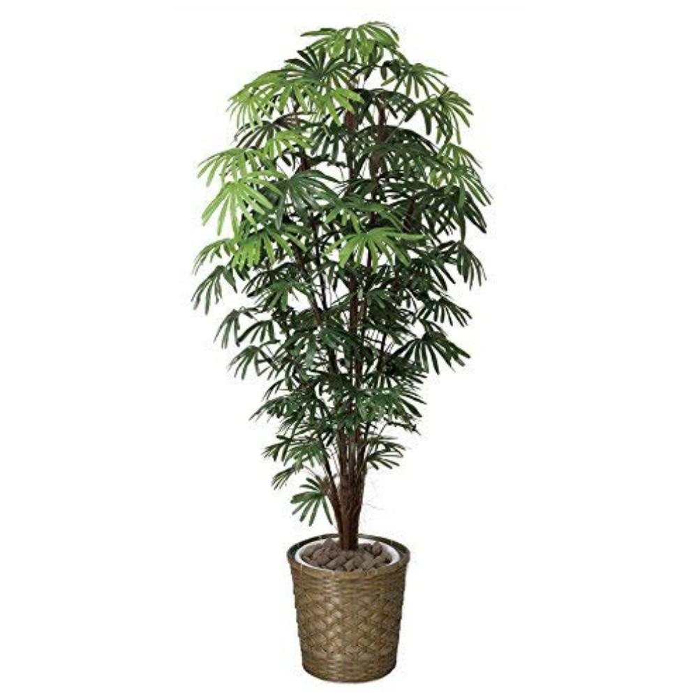 光触媒 光の楽園 シュロチク1.8 501F570約 幅75×奥行70×高さ180cm人工植物 造花 フェイクグリーン おしゃれ インテリア 大型 和風 棕櫚竹