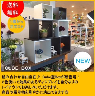 CUBE BOX ロの字(3個セット)【送料無料】収納 カラーボックス ラック シンプル 棚 本棚 書籍 テレビ台 DIY メラミン化粧板仕上