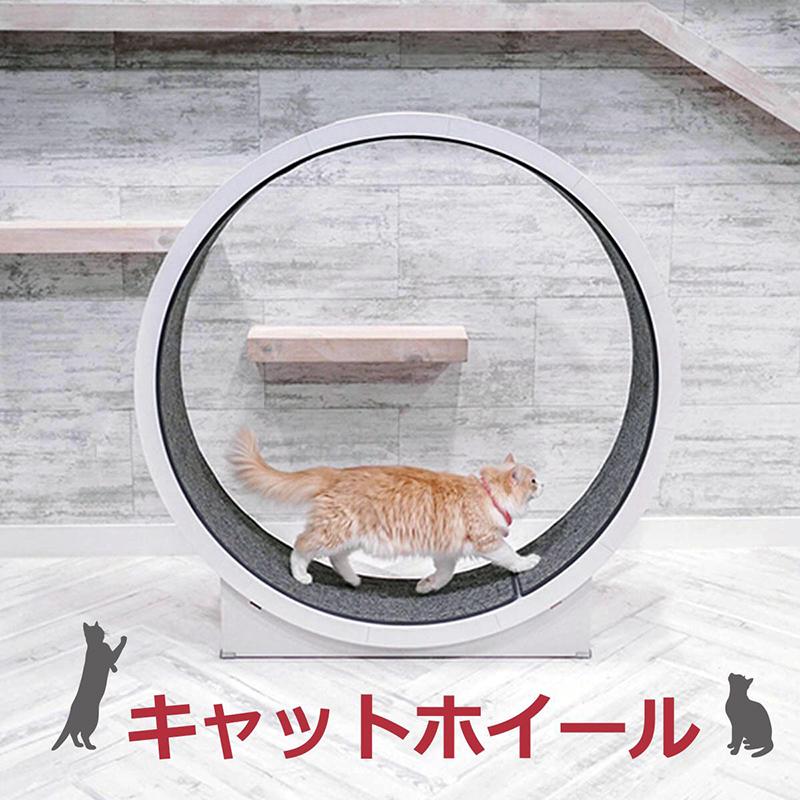 キャットホイール キャットウォーク cat wheel 猫ホイール 室内飼い 猫 犬 健康管理 運動不足解消 ストレス解消 ダイエット 爪とぎ おもちゃ ペット用ランニングマシーン 組み立て製品 分解