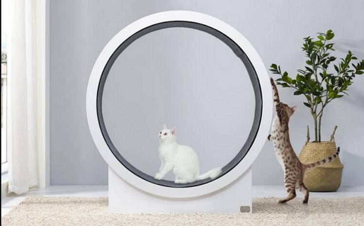 Cat wheel キャットウォーク 回転車 猫の室内運動 猫 ホイール 回し車 DIY簡単 猫ホイール ローダ 猫運動 練習機 ランニング 猫の運動ホイール プラスチック