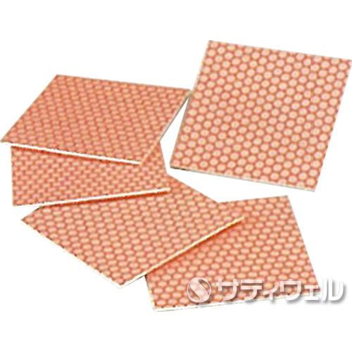【送料無料】日本ケミカル工業 トイレコートシステム 研磨シート(標準タイプ) 100×100mm 5枚セット