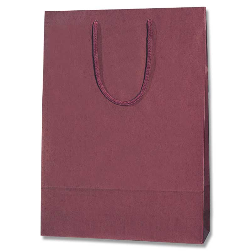 今だけスーパーセール限定 マット感を生かした紙袋です 紙袋 手提げ カラーチャームバッグ 2才 エンジ 紙手提袋 メーカー直売 手提げ紙袋 手提げ袋 10枚 ラッピングバック