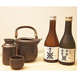 商品が届いたその日から本格的な燗酒がお楽しみいただけます 爆売り お好みの温度を探してみてください 日本酒 ギフト 送料無料 燗酒ことはじめセット300ml×2本セット プレゼント 激安セール 燗徳利セット