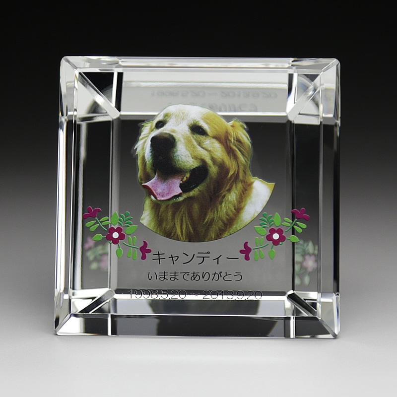 ペットは家族の一員、人間と同じように最後まで家族として近くに置いてあげて下さい、ペット位牌にあなたの可愛いペットの写真をフルカラーでいつまでも、そしていつでも帰ってこれるようにしてあげて下さい最愛のペットの為に