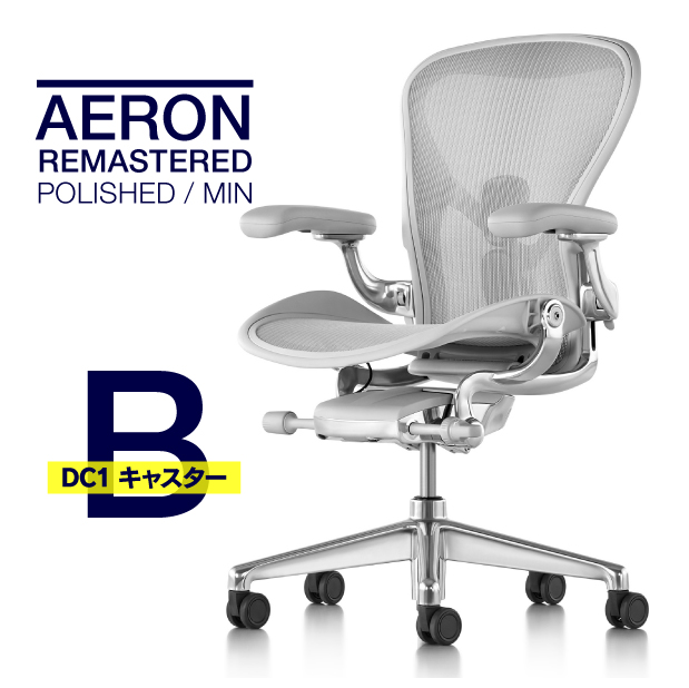 【2020/04/27入庫予定】ハーマンミラー アーロンチェア リマスタード Bサイズ ミネラルカラー ポリッシュドアルミニウムベース DC1キャスター レザーアーム AER1B23DF ALPVPRCDCDDC1231012118 在宅勤務 在宅ワーク テレワーク 椅子 イス