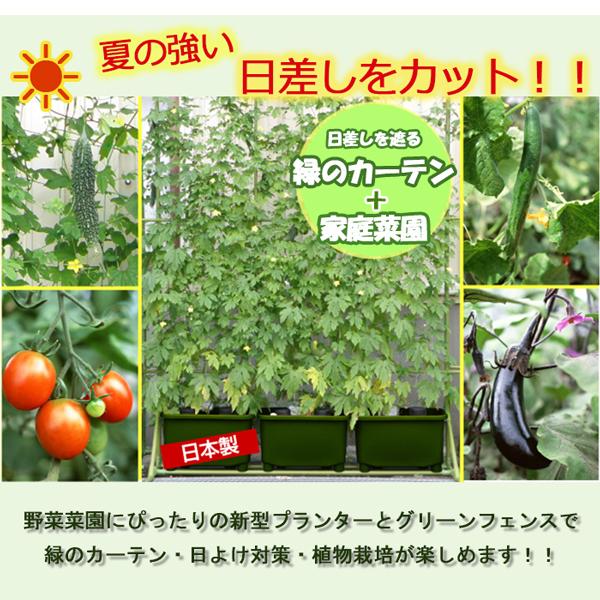 【送料無料】グリーンフェンス+深型プランター(同色3個)セット!!/グリーンカーテン/家庭菜園/日差しよけP15Aug15
