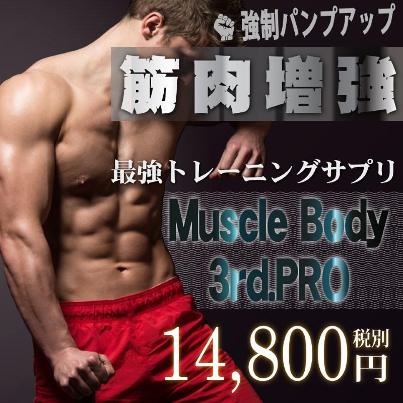 Muscle Body 3rd.PRO(マッスル ボディ サード.プロ)