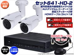 防犯カメラセット・監視カメラセット【セット641-HD-2】 HD-SDI ハイビジョン画質 防雨型カメラ2台と4chデジタルレコーダー★★★