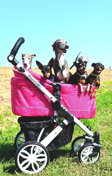 TANTO公式通販サイトピッコロカーネバギーカート犬用バギー大型犬バギー対面式ペットカートペットスローラーTANTO2ハンドルカバー付ペットバギータントIITANTOIIタント2犬カートtanto2新型TANTO