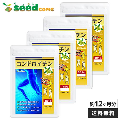 コンドロイチン 約12ヵ月分 【seedcoms_D】12D 2881【DEAL3205】【DEAL3206】【DEAL3204】【DEAL0507】