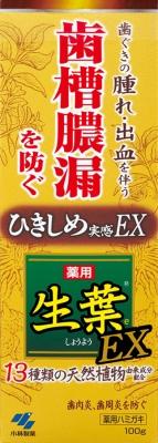 小林製薬 生葉EX 100g 100g×96個【送料無料】【オーラル】【歯磨き】【歯ブラシ】
