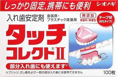 塩野義製薬 タッチコレクト ×100個【送料無料】【オーラル】【歯磨き】【歯ブラシ】