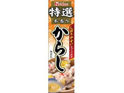 ハウス食品 特選本香りからし42g ×120個【送料無料】