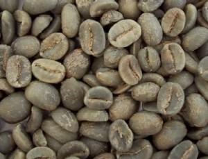 【】 コーヒー生豆 有機栽培コロンビア 1kg(オーガニック)【jo_62】 【】