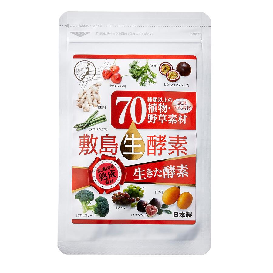 70種類以上の国産野菜果物の生きた酵素サプリメント 生酵素サプリメント 送料無料 約30日分 敷島生酵素 正規逆輸入品 60粒入 チープ 全部国産素材 セール スーパーSALE