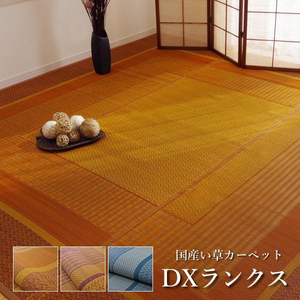 【送料無料】国産 い草 ラグカーペット ござ「 DXランクス 」江戸間4.5畳(約261×261cm)