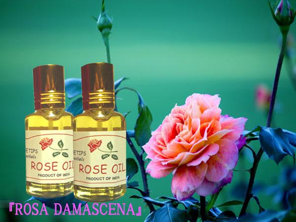 ペコー ティップス ダマスクローズ オイル オット 100%精油(インド産)2本 PEKOE TIPS TEA ROSE ESSENTIAL OIL ROSA DAMASCENA(Damask rose) 12ml*2set