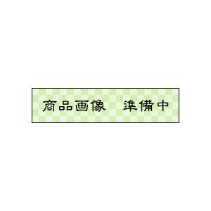 林篁 5.0丁型