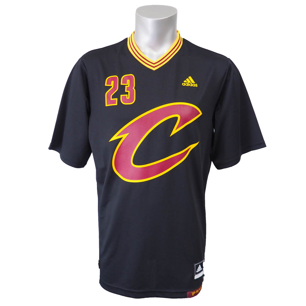 And the NBA Cavaliers LeBron James revolution Replica Jersey adidas /Adidas Pride