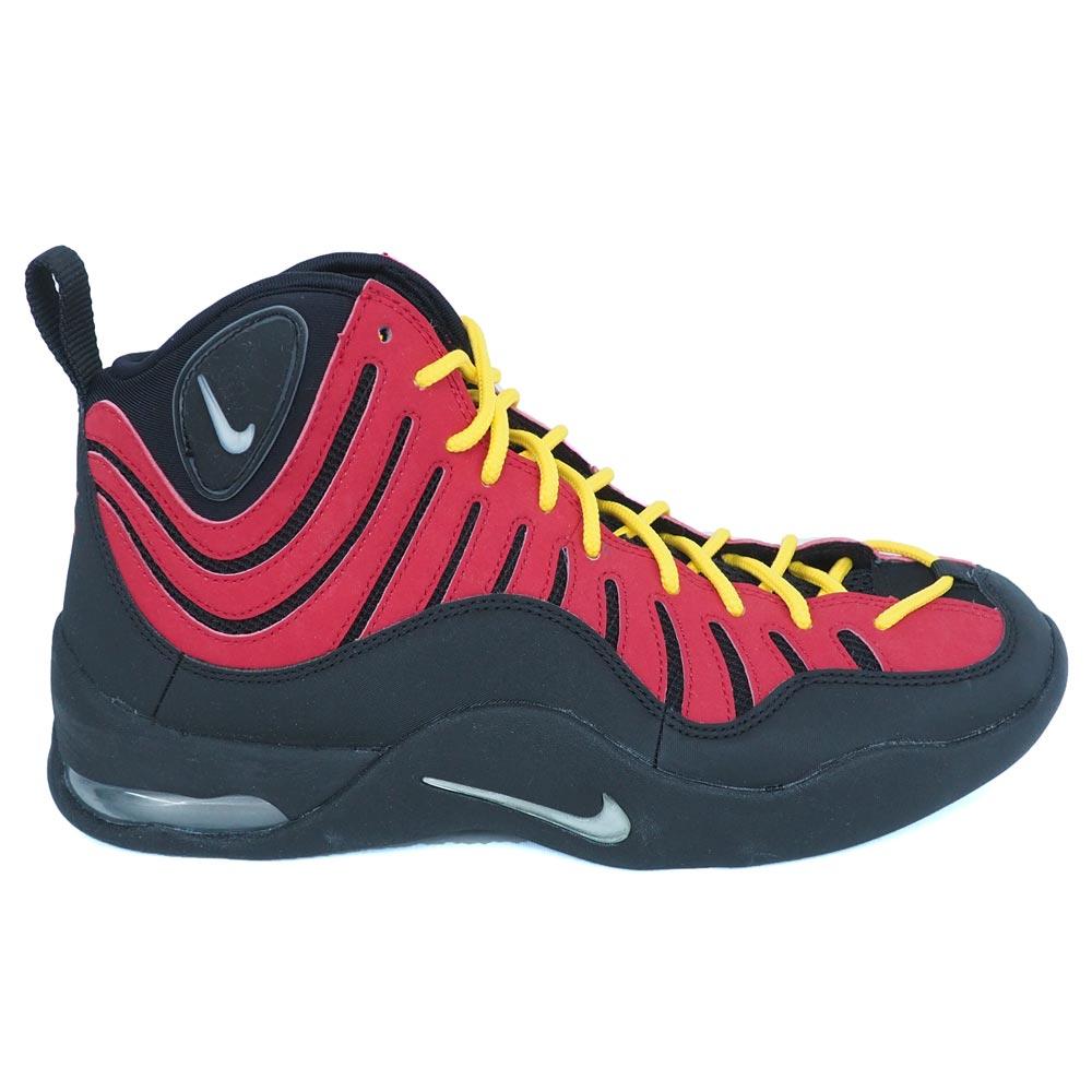 デニス・ロッドマン エア ベイキン AIR BAKIN バッシュ/シューズ ナイキ/Nike 316383-001 レアアイテム