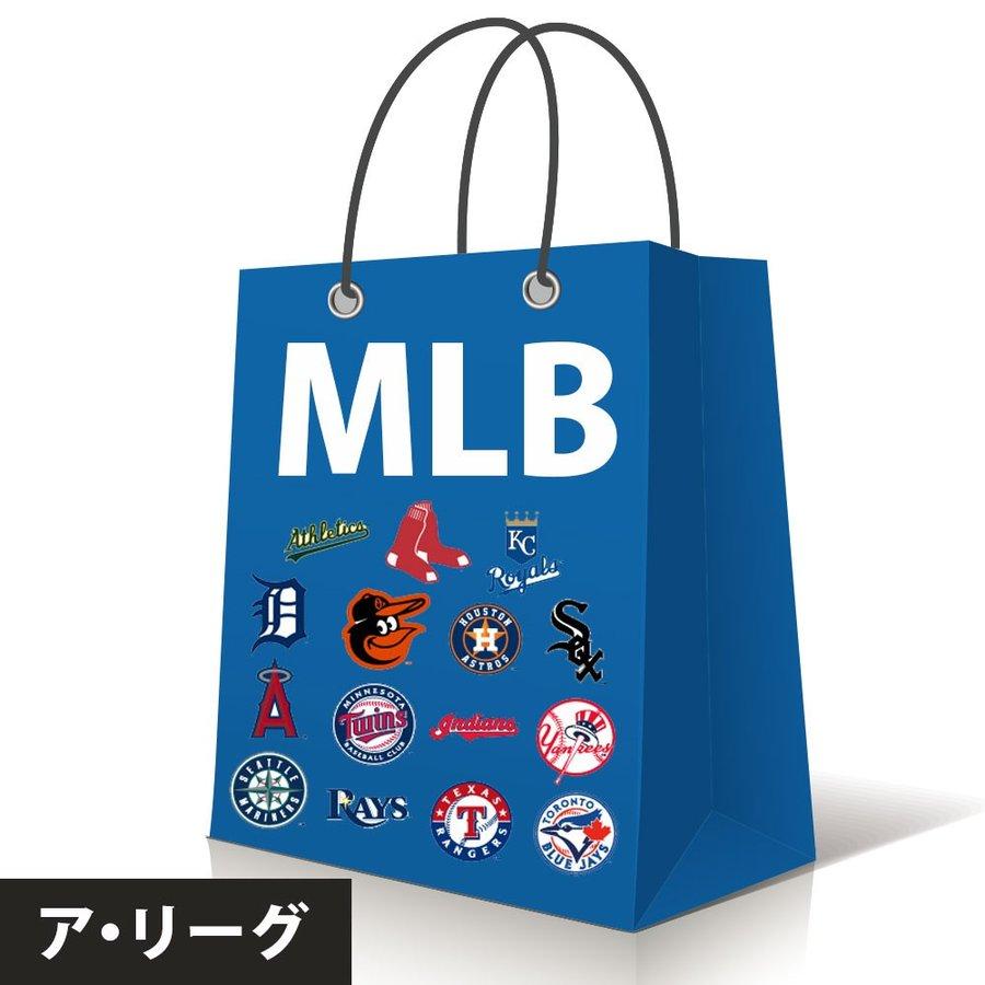 筒香選手所属 ご予約 MLB ア・リーグ 2020 10万円 チームが選べる 福袋