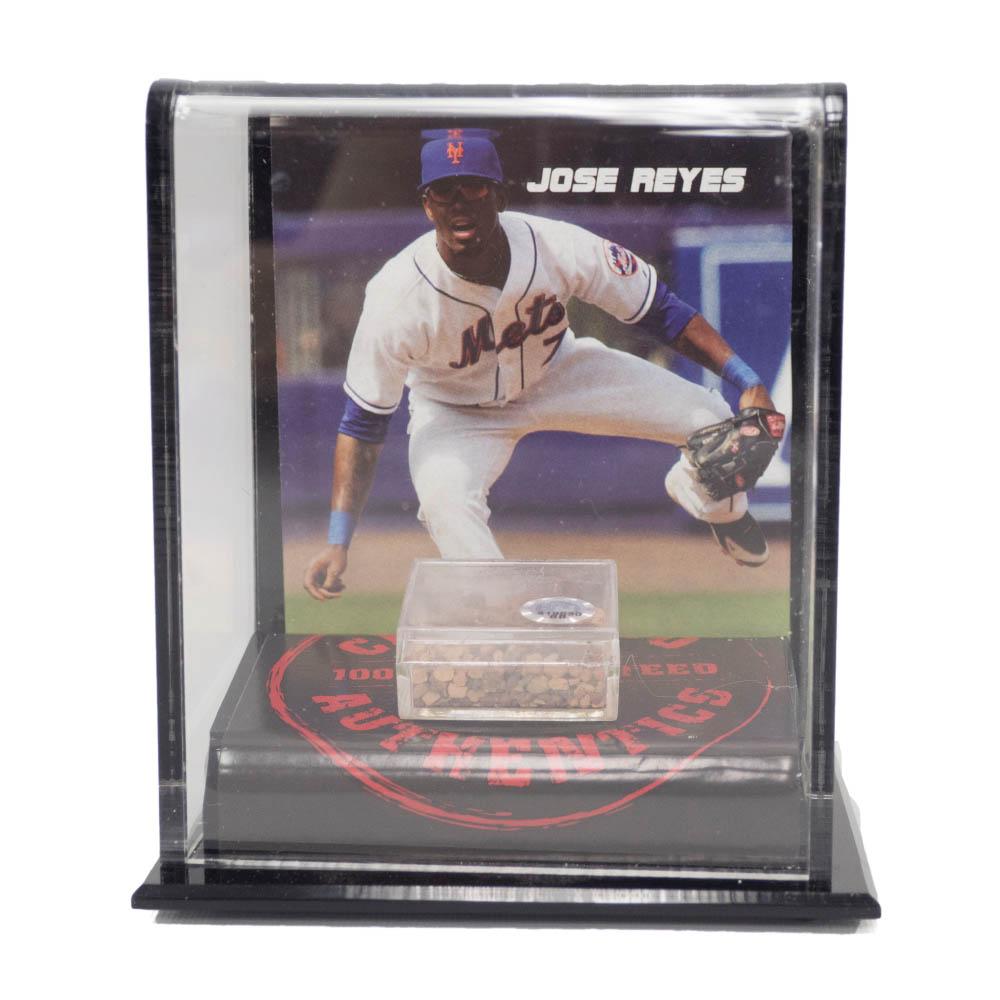 MLB ホセ・レイエス メッツ 2007 ゲーム ユーズド メモラビリア ディスプレイ Mounted Memories Dirt
