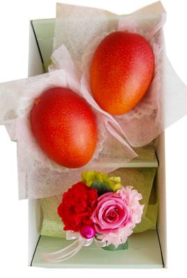 【送料無料】《母の日ギフト》完熟マンゴーとカーネーションのセット 化粧箱入