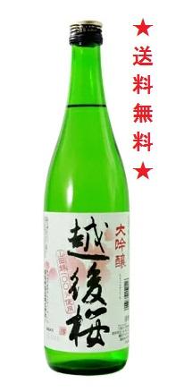 【送料無料】越後桜 大吟醸 720mlx6本