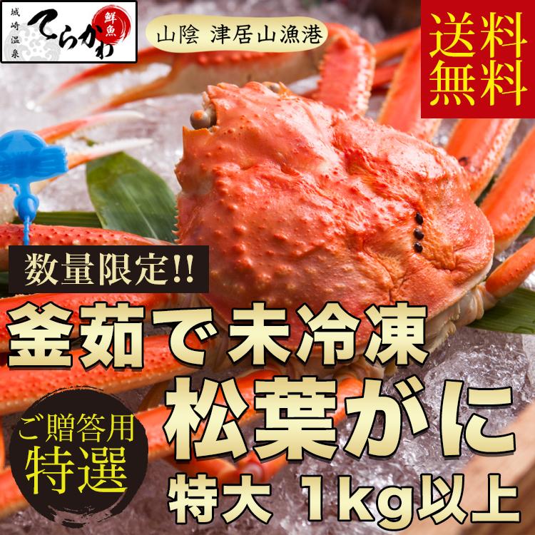 【松葉ガニ 送料無料】プロが釜茹でした極上の『松葉がに』(ボイル)茹でたて未冷凍のタグ付 松葉がに1匹入(特大1kg以上サイズ)