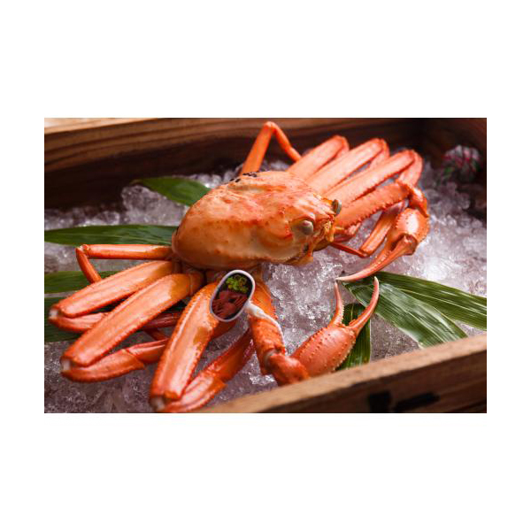 タグ付きブランド蟹!ほっぺが落ちるほどウマい蟹を教えて下さい!