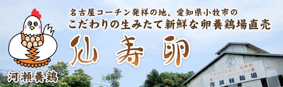 仙寿卵:名古屋コーチン発祥地、愛知県小牧市 こだわり産みたて新鮮な卵 養鶏場直売