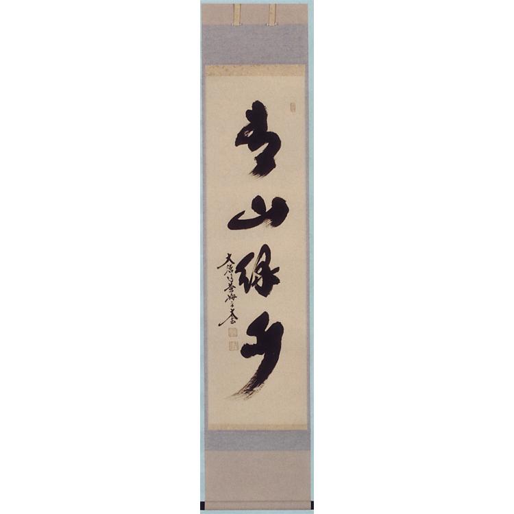 茶道具 軸 一行物 「青山緑水」 小林太玄師 軸(茶道具 通販 )