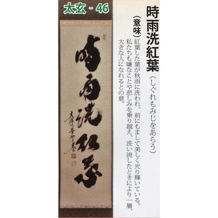 茶道具 掛け軸 軸 一行物 「時雨洗紅葉」 大徳寺黄梅院 小林太玄師