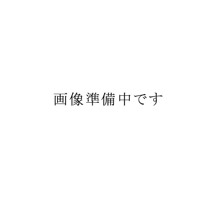 茶道具 懐石道具(かいせきどうぐ) 手付飯器 黒縁朱 即中斎好 (杓子付)