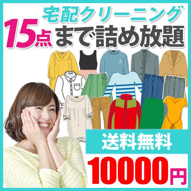クリーニング 【送料無料】 詰め放題 「BOX-15」 15点まで10000円 おためし 詰め放題 宅配 洗濯 衣替え 宅配バッグ 子供服 せんたく まとめて