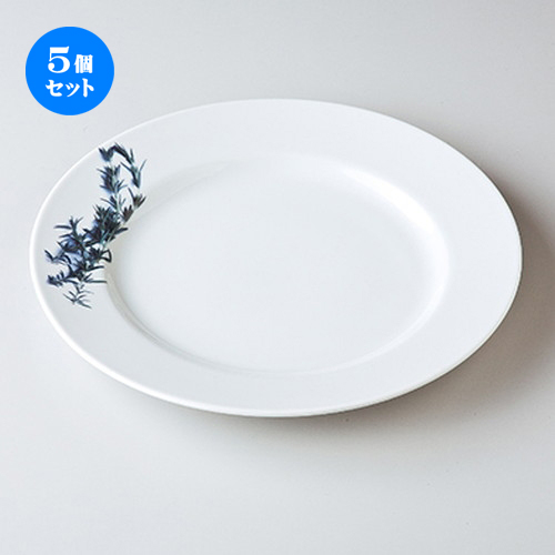 5個セット☆ モダンスタイル ☆ ローズマリー28cmプレート [ 28 x 2.2cm ] 【 レストラン ホテル カフェ 洋食器 飲食店 業務用 】