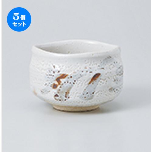 5個セット☆ 抹茶碗 ☆ 白志野抹茶(トムソン箱) [ 12 x 8cm ] 【 茶道具 抹茶 茶道 茶器 】