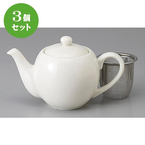 3個セット☆ ポット ☆CTNBティーポット [ 390cc ] 【 旅館 カフェ 和食器 飲食店 業務用 】