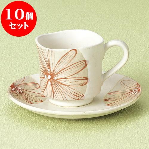 10個セット コーヒー 大輪菊白コーヒー碗皿 [ 7.4 x 7cm 180cc ・ 14 x 1.8cm ] 料亭 旅館 和食器 飲食店 業務用