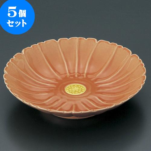 5個セット 有田焼逸品 オレンジ釉こすもす皿(有田焼) [ 16 x 4cm ] 料亭 旅館 和食器 飲食店 業務用
