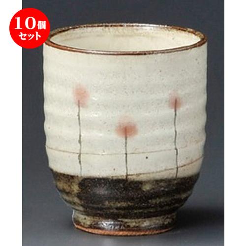 10個セット☆ 寿司湯呑 ☆ 野花寿司湯呑 [ 80 x 93mm ] 【寿司店 和食器 飲食店 業務用 】