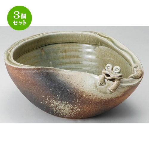 3個セット☆ 花器 ☆ 11号蛙付めだか鉢 [ 340 x 160mm ] 【インテリア 和室 華道 花瓶 】