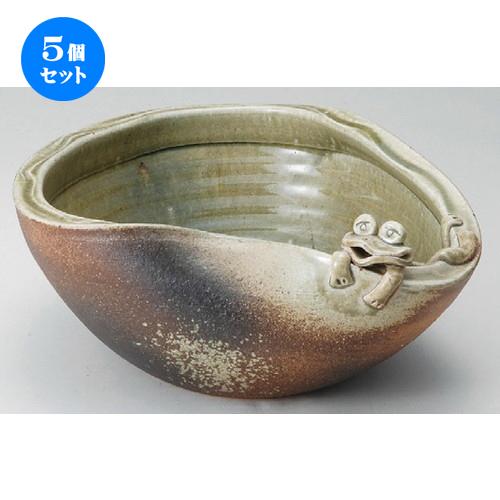 5個セット☆ 花器 ☆ 11号蛙付めだか鉢 [ 340 x 160mm ] 【インテリア 和室 華道 花瓶 】